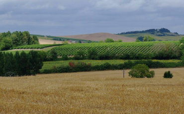 Champagne-Vigny_Polyculture
