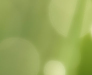 banner-celagri